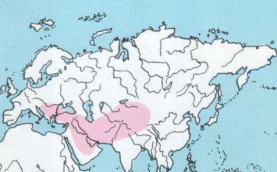 Uitwerpselen kaart