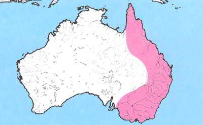 kaart australië oostkust